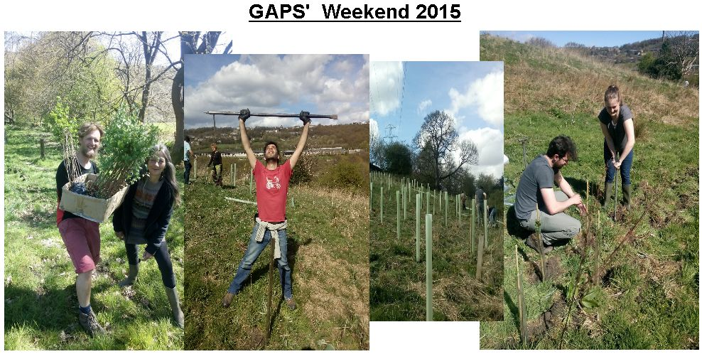 GAPS Weekend for website