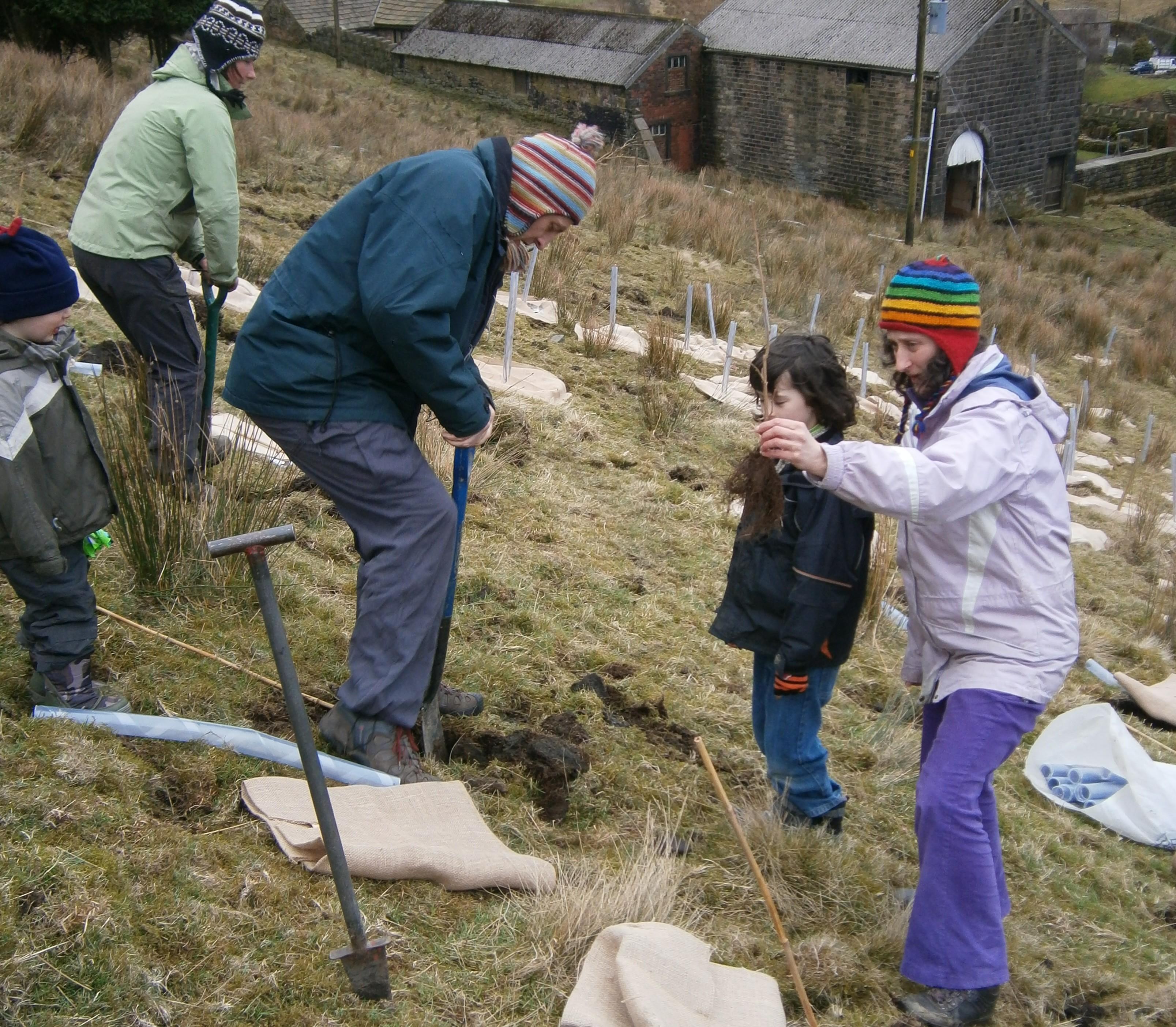 Winter family planting