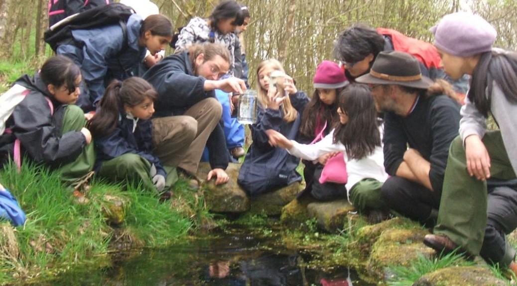 Pond dipping header