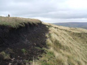 Damaged peat in Calderdale