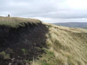 Damaged peat in Calderdale